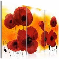 Schilderij - Klaprozen op een zonnige dag , rood oranje , 3 luik