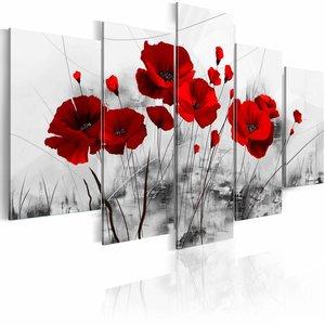 Schilderij - klaprozen - rood  wonder , wit , 5 luik