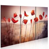 Schilderij - Bright red poppies