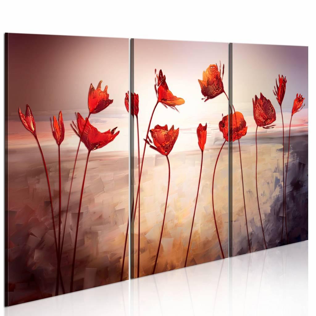 Schilderij - Klaprozen op steel , roze rood , 3 luik