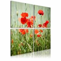 Schilderij - Lente , klaproos , groen rood , 4 luik