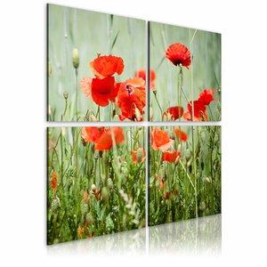 Canvas Schilderij - Lente , klaproos , groen rood , 4 luik , 2 maten