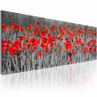 Schilderij - Klaprozen  120x40cm , rood grijs , 1 luik