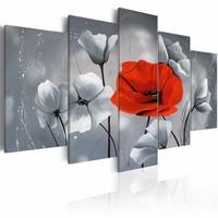 Schilderij - Klaprozen in rood en wit , grijs , 5 luik