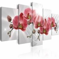 Schilderij - Abstracte tuin: Rode Orchidee , 5 luik