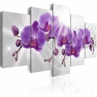 Schilderij - Abstract Garden: Purple Orchis