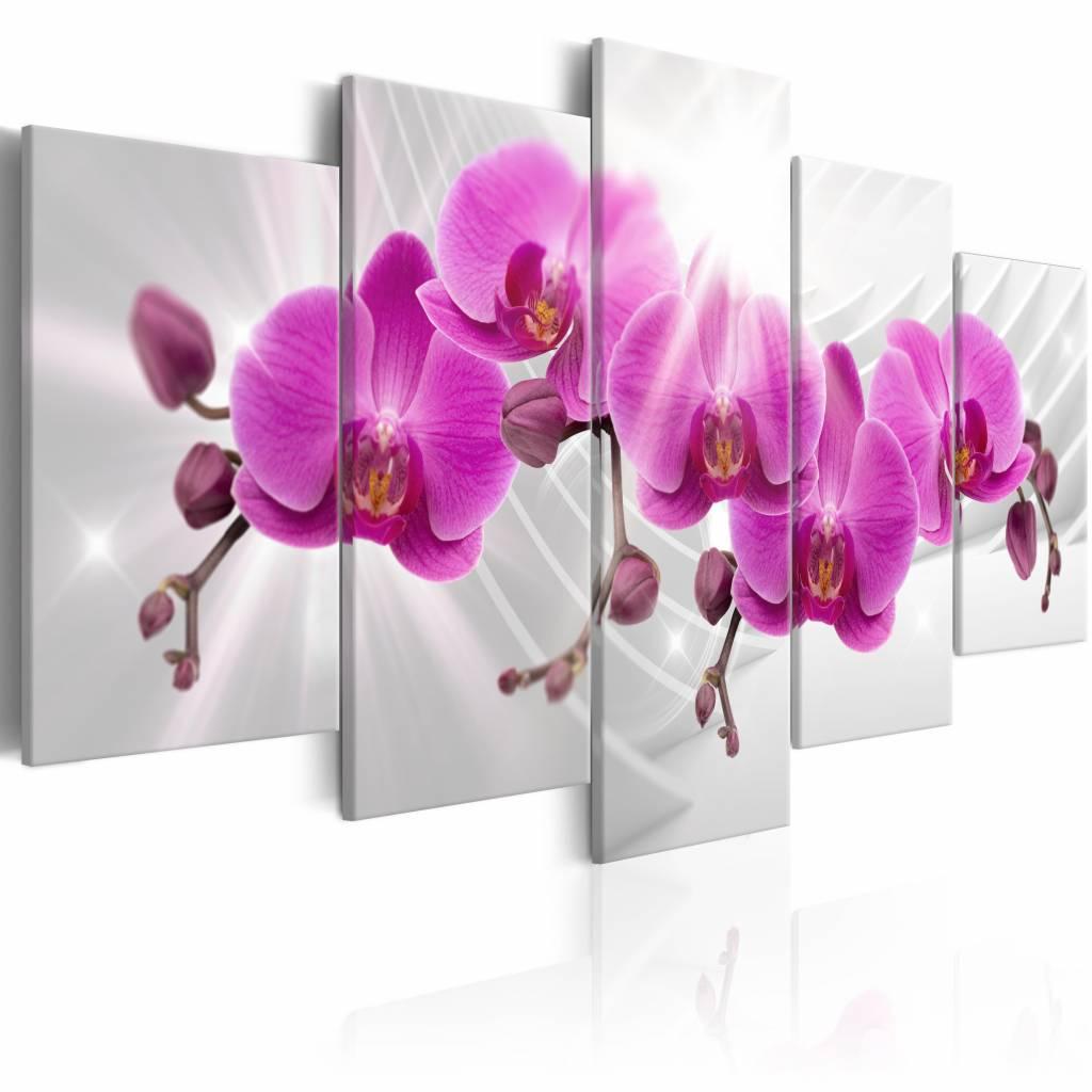 Schilderij - Abstracte tuin: Roze Orchidee ,5 luik