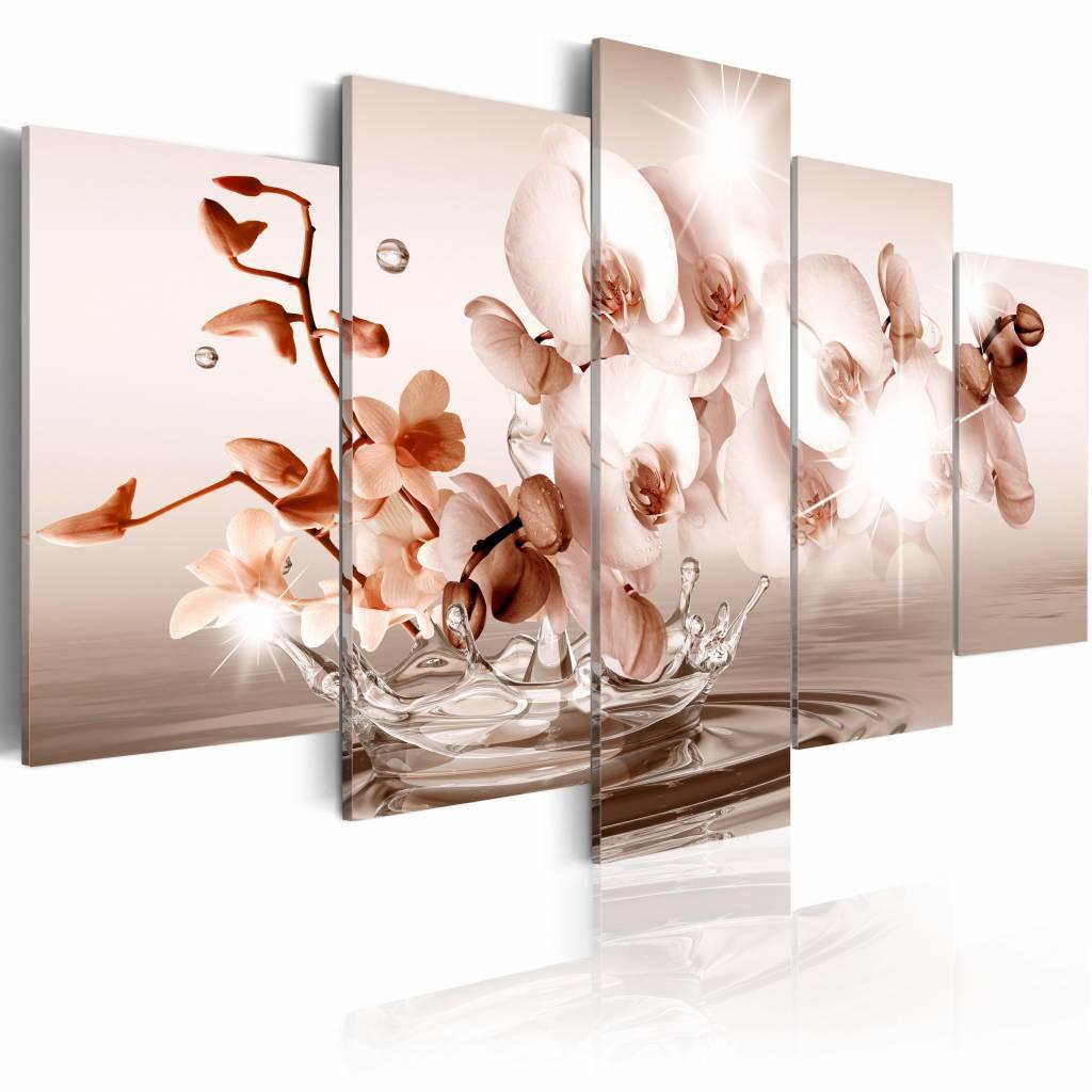 Schilderij - Pure po�zie - orchidee , wit roze , 5 luik