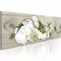 Schilderij - Woestijn Wind - Orchidee 150X50cm , beige wit , 1 luik