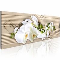 Schilderij - Woestijn bloem - Orchidee , beige wit