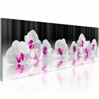 Schilderij - Orchideeën in water , wit zwart , 1 luik