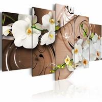 Schilderij - Ivoren Orchidee , wit bruin , 5 luik