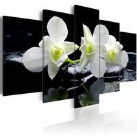 Schilderij - Melancholische Orchidee , zwart wit , 5 luik , 2 maten