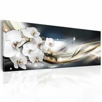 Schilderij - Onschuldige aanraking - Orchidee , wit grijs , 1 luik