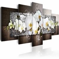 Schilderij - Bloemen van onschuld - Orchidee , wit bruin , 5 luik