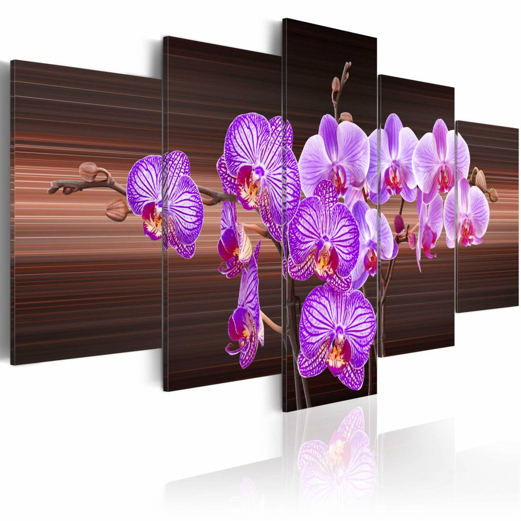Schilderij - Bloemen van vreugde - Orchidee , bruin paars , 5 luik