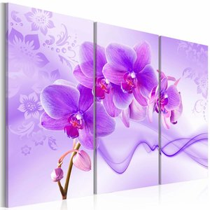 Canvas Schilderij - Orchidee in violet , paars , 3 luik , 2 maten