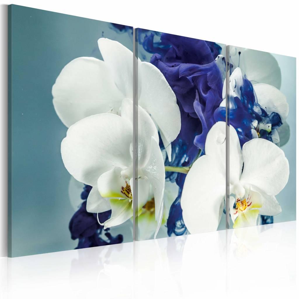 Schilderij - Hersenschim orchideeën , 3 luik