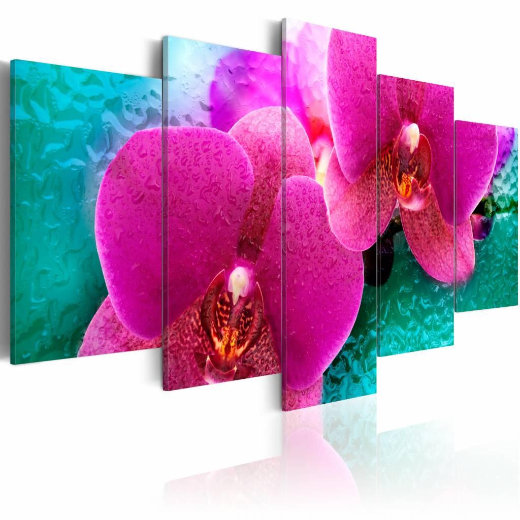 Schilderij - Exotische Orchidee , roze groen , 5 luik