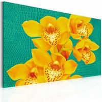 Schilderij - In het geel 60x40 , groen , 1 luik , orchidee