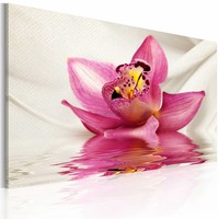 Schilderij - Ongewone Orchidee 60x40cm , wit roze