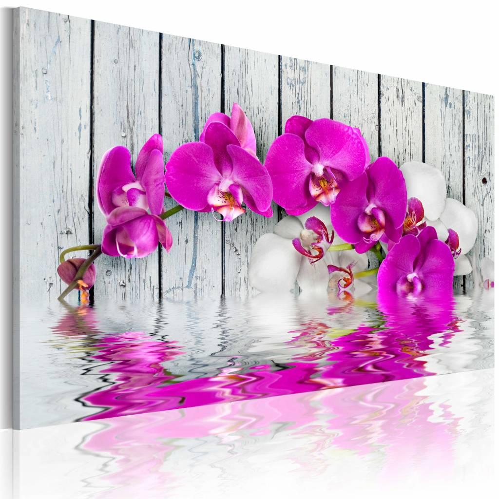 Schilderij - harmonie: orchidee 60x40cm , roze , hout look