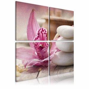Schilderij - Orchidee en zen , wit roze , 4 luik , 2 maten