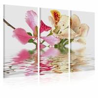 Schilderij - Orchideeën met roze vlekken , 3 luik