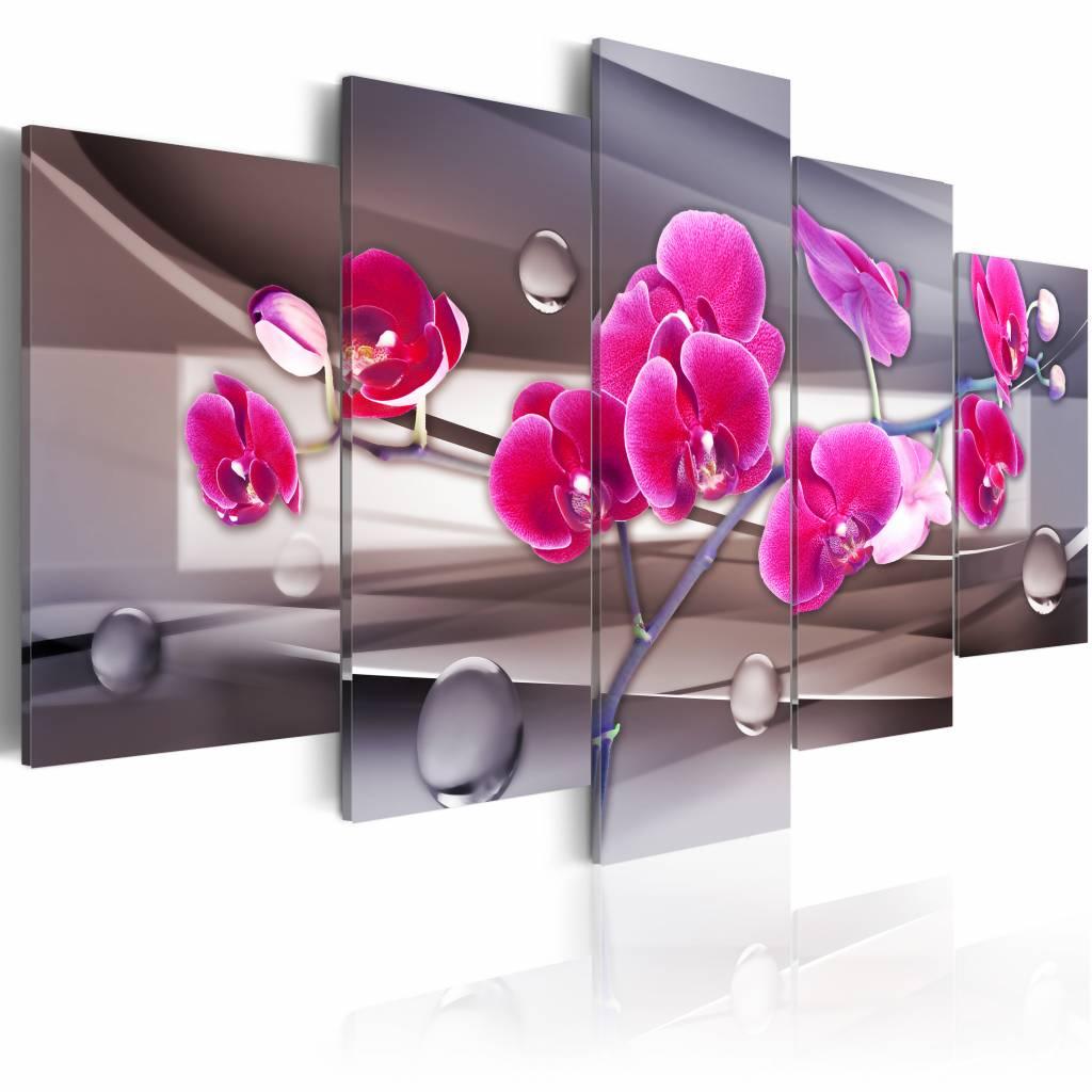 Schilderij - Orchidee op een ingetogen achtergrond , roze grijs , 5 luik , 200x100