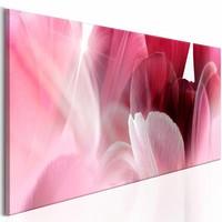 Schilderij - Bloemen: Roze Tulp