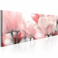 Schilderij - Roze Tulpen  , wit , 1 luik