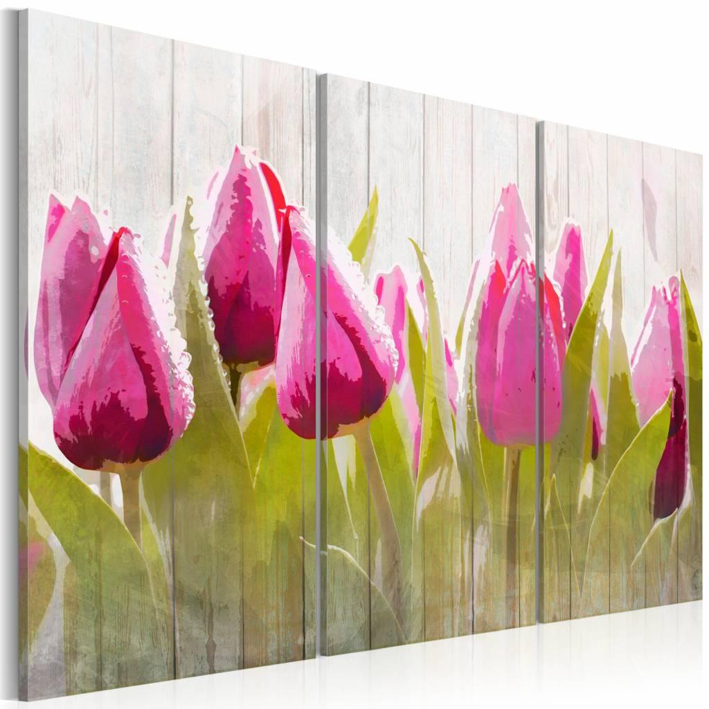 Schilderij - Tulpen in de lente , roze groen , 3 luik