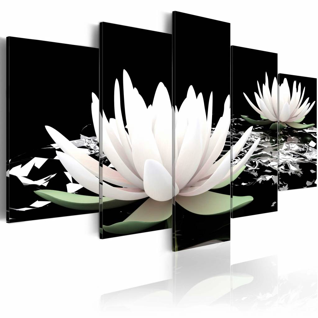 Schilderij - Waterlelie , zwart wit , 5 luik
