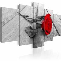 Canvas Schilderij - Roos op hout , rood , hout look , 5 luik , 2 maten