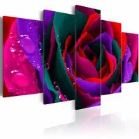 Canvas Schilderij - Multi kleurige roos , bloem , 5 luik , 2  maten
