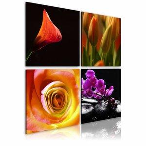 Canvas Schilderij - De essentie van schoonheid , multi kleur , 4 luik , 2 maten