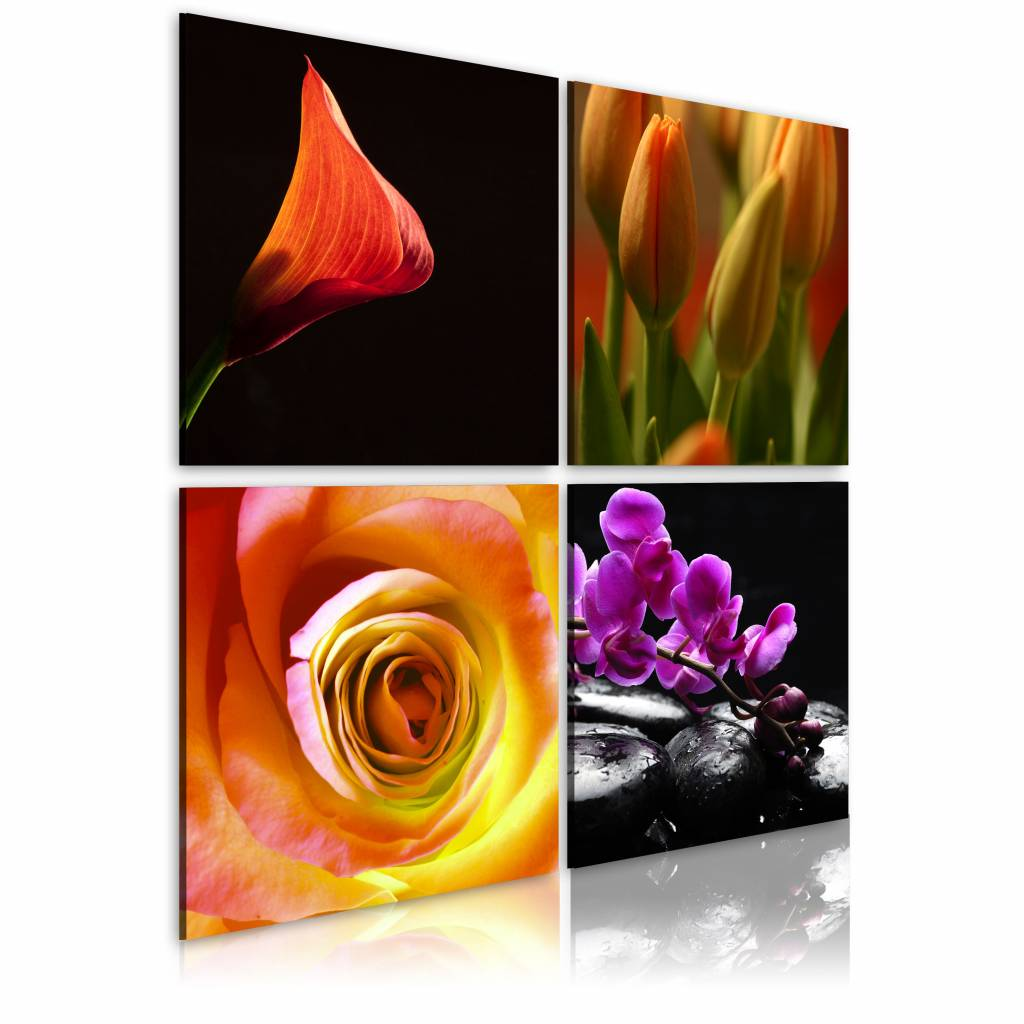 Schilderij - De essentie van schoonheid , multi kleur , 4 luik