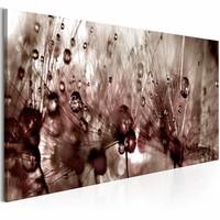 Schilderij - Paardebloem na de Regen , bruin , 1 luik