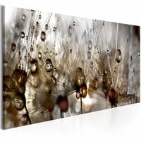 Schilderij - Waterdruppels op Paardenbloem , bruin grijs , 1 luik , 3 maten