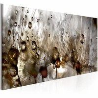 Schilderij - Waterdruppels op Paardenbloem