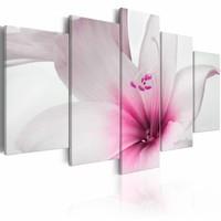 Schilderij - Amaryllis: Roze Charme , 5 luik