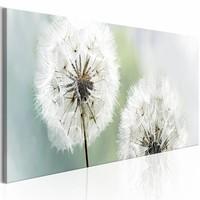Schilderij - Romantische Zomer - Paardenbloem 150X50 , wit groen , 1 luik