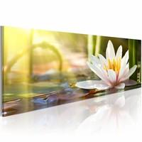 Schilderij - Lotus Gloei 150X50cm , geel wit , 1 luik