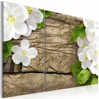 Schilderij - Jasmijn op hout , wit bruin , hout look , 3 luik