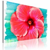 Schilderij - Hawaiiaanse Bloem , rood , 1 luik , 60x40