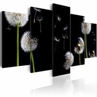 Schilderij - Paardenbloem zoekt de vrijheid , zwart wit , 5 luik , 2 maten