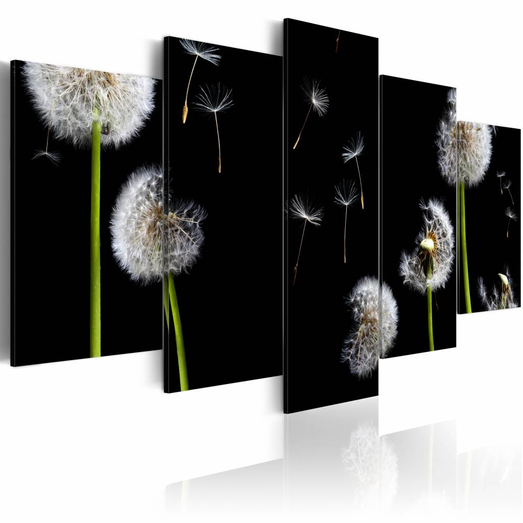 Schilderij - Paardenbloem zoekt de vrijheid , zwart wit , 5 luik