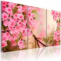 Schilderij - Kersenbloesem , roze beige , 3 luik ,2 maten