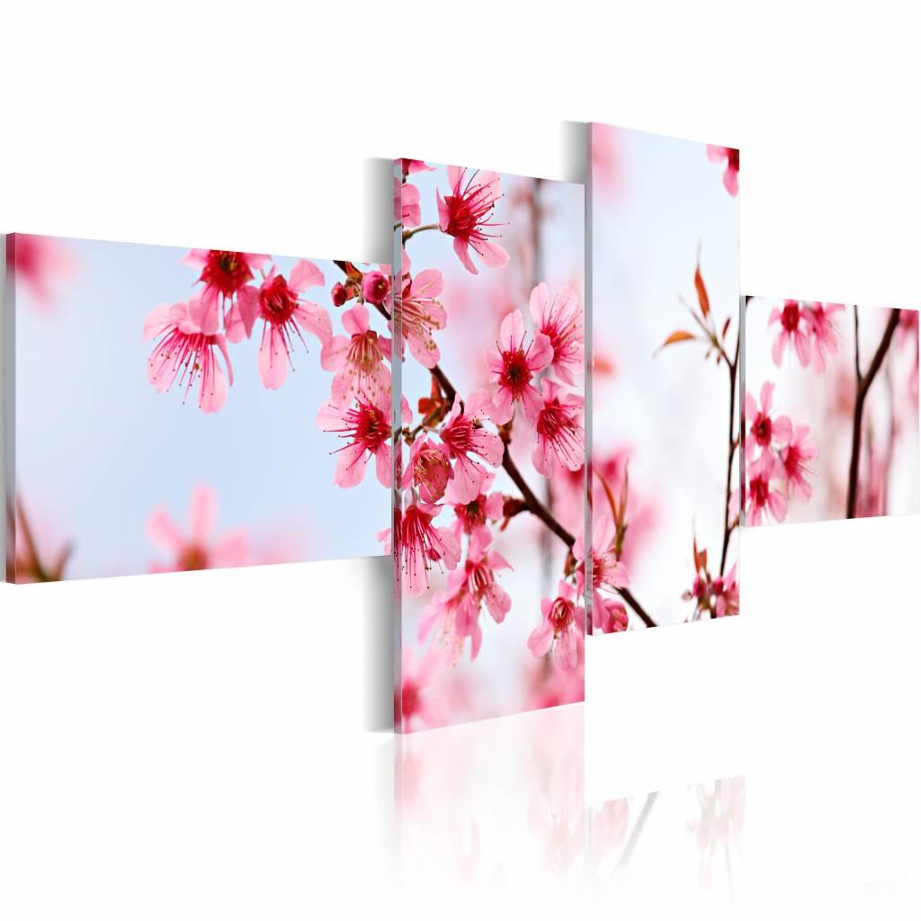 Schilderij - Schoonheid van de kersenbloesem , wit roze , 4 luik