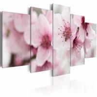 Canvas Schilderij - Kersenbloesem zachtmoedig en schoon , wit roze , 5 luik . 2 maten